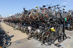 Free Massive Bicycle Parking At Back Part Of Amsterdam Central Station Royalty Free Stock Photos - 164277388