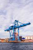 Massive blue cranee Royalty Free Stock Images