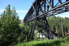 A massive bridge in the wilds of alaska. Royalty Free Stock Photo