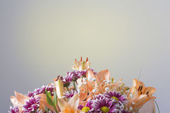 Massive colorful flower bouquet on a grey background Stock Image