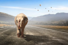 Massive elephant as symbol for transportation concept . Mixed media Stock Photos