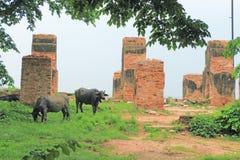 Massive Fatehpur Sikri fort and complex Uttar Pradesh India Stock Images