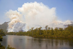 Massive forest fire. With smoke in Tasmanian wilderness Royalty Free Stock Images