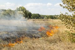 Massive forest wildfire due to hot, dry and windy weather stock photos