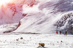 Massive Glacier at High Altitude Severe Mountains and Small Body of Alpine Climber Walking Royalty Free Stock Image