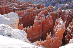 Massive hoodoos in the Utah Mountains Royalty Free Stock Photos