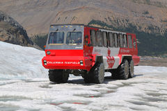 Massive Ice Explorer, specially designed for glacial travel, take tourists onto the surface of the Columbia Icefields, Canada. ALBERTA, CANADA- JULY 27  Massive Stock Photos