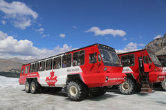 Massive Ice Explorers, specially designed for glacial travel, take tourists in the Columbia Icefields, Canada. ALBERTA, CANADA- JULY 27  Massive Ice Explorers Royalty Free Stock Photography