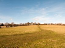 Massive open plain farm field grass agriculture england blue sky ahead big empty path. Essex; england; uk Stock Image