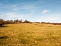 Massive open plain farm field grass agriculture england blue sky ahead. Essex; england; uk Royalty Free Stock Photos