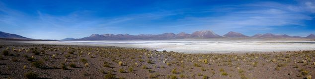 Panorama of a salt lake in Chile stock image