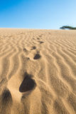 Massive sand dunes in La Guajira, Colombia Royalty Free Stock Photos