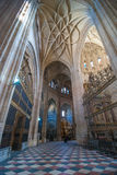 Massive Segovia Cathedral. Stock Photography