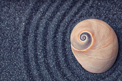 A massive  snail shell in a zen garden with grey sand Stock Photography
