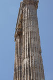 Massive stone columns of the Apollo temple Stock Images