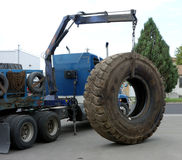 A massive truck tire. Royalty Free Stock Images