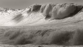 Massive Waimea storm surf Royalty Free Stock Photos