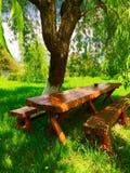 Massive wood table under a tree. Massive oak wood table under a willow tree royalty free stock photo