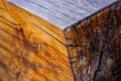 Massive wooden log, processed wood