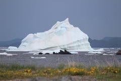 massivt isberg royaltyfria bilder