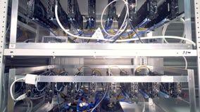 Massor av bitcoingruvarbetareaktivering på shelfs Bryta cryptocurrency Bitcoin begrepp lager videofilmer
