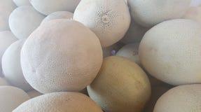 Massor av cantaloupmelon arkivbilder