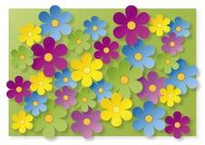 Massor av färgrika blommor Royaltyfri Fotografi
