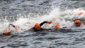 Massor av kvinnligt simma för triathletes Arkivbilder