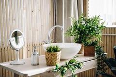Massor av moderna inlagda vintergröna konstgjorda växter som används i inregarnering i badrum arkivbilder