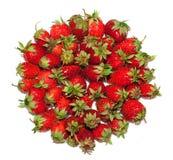 Massor av moget, nytt, saftigt, jordgubbar läggas i cirkeln som isoleras på white/ Arkivfoto