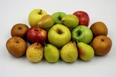 Massor av nya frukter varierade royaltyfri foto