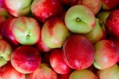 Massor av persikor Arkivfoton