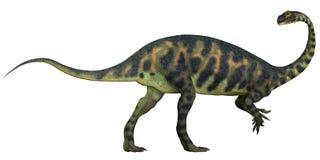 Massospondylus profil royaltyfri illustrationer