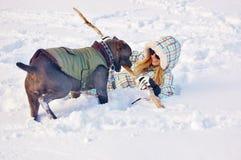 Mastín del corso del bastón que juega nieve del invierno de la mujer joven Foto de archivo libre de regalías