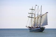 mast fyra piratkopierar den högväxt shipen Royaltyfri Fotografi