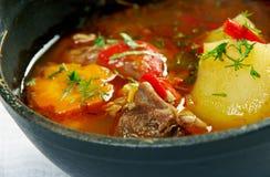 Mastava soup Royalty Free Stock Photo