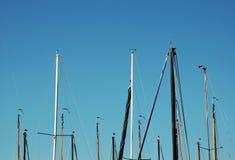 Masten van zeilboten tegen blauwe hemel stock afbeelding