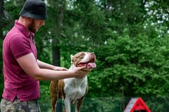 Free Master And His Obedient Dog At A Dog Training Center Stock Images - 121978084