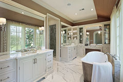 Master bath with back yard view Royalty Free Stock Photography