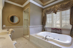 Master bath in elegant home royalty free stock image