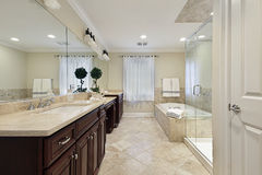Master bath with glass shower royalty free stock images