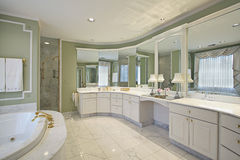 Master bath with green walls Royalty Free Stock Photography