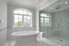 Master bath with large shower Royalty Free Stock Image