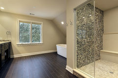Master bath with large shower Stock Photos