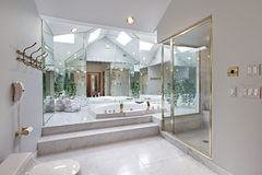 Master bath with mirrored tub area Royalty Free Stock Photography