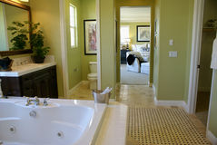 Master Bath Room Royalty Free Stock Image