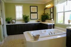 Master Bath Room. Beautiful green master bath room with a spa tub royalty free stock image