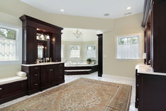 Master bath with separate tub room Stock Photography
