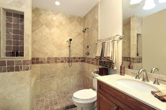 Master bath with stone shower Stock Image