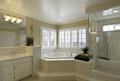 Free Master Bathroom Stock Photography - 19470962